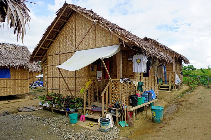 typhoon haiyan survivor news