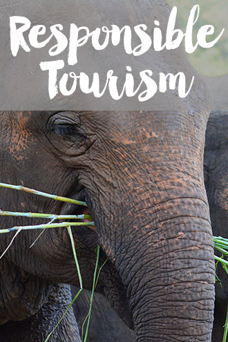 Responsible tourism travel tips