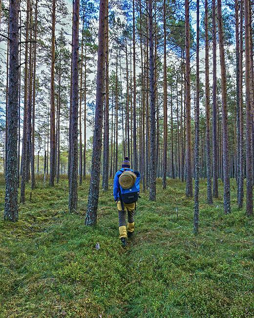 estonia backpacking guide