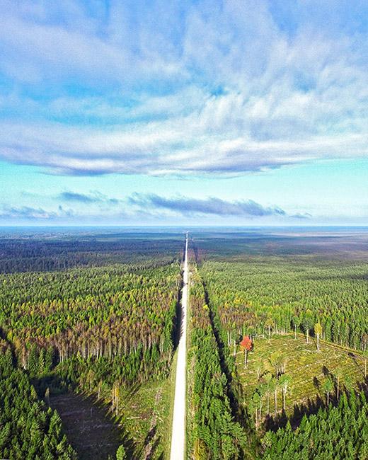 estonia travel tips